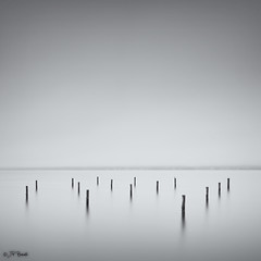 Yet Again We're The Only Ones (JP Benante...back from the dead) Tags: longexposure bw mist water weather fog cloudy seagull tide maryland shore lee pylons current fifteen 1740l patuxentriver yetagain 5dii bigstopper jpbenante