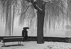 Winter Romantics (Tay-FUN) Tags: winter lake snow tree romantic ruby5
