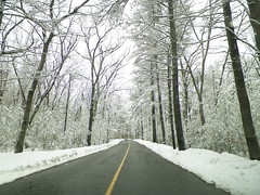 Harold Parker State Forest (Littlerailroader) Tags: winter snow day massachusetts newengland andover roads haroldparkerstateforest andovermassachusetts
