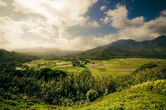 Hanalei Valley (A. Strakey) Tags: hawaii day cloudy northshore kauai hi princeville thegardenisland hanaleivalleylookout rte560 namolokamamountain