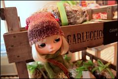 352/365 Carluccio's shop.