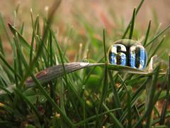 60 * Earth Hour Global !!!! ...........La Hora del Planeta