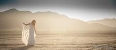 Sunset bride (D'Abascal Photography/ Ramses Abascal) Tags: nikond700 artofimages nikkor28105mmf3545afd bestportraitsaoi elitegalleryaoi