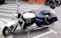 Tapizado de asientos de moto de Triumph (Tapizados y gel para asientos de moto) Tags: moto asiento acolchado tapizar