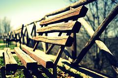 la prossima storia (enrico piscopo) Tags: 35mm legno bosco panchina