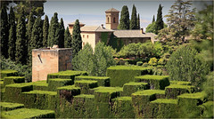 L'Alhambra depuis le Generalife, Alhambra, Granada, Andalucia, Espana (claude lina) Tags: claudelina espana spain espagne andalucia andalousie granada grenade ville town alhambra garden generalife