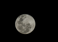Full moon (AWLancaster) Tags: sky moon sony tranquility luna fullmoon craters telephoto planet astronomy nightsky lightroom sonyphotography astrophotographers
