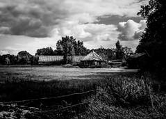 (Nico_1962) Tags: landschap lucht clouds wolken overijssel nederland thenetherlands leica m240 rangefinder zwartwit bw weiland farm boerderij leicam manualfocus primelens summarit35mm hanks