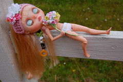 DSC_0013 (Lindy Dolldreams) Tags: blythedoll chassycat