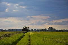 Dolina Neru (JoannaRB2009) Tags: valley dolina ner river rzeka meadow grass green tracktor sky blue clouds nature landscape view path road countryside rural dzkie lodzkie polska poland summer
