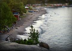 HANKO and the dead shark (pentlandpirate) Tags: hanko finland hango suomi fisherman hut shed beach baltic sea gunnarsstrand