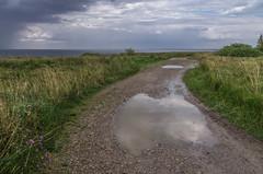 between the two rains (Seerin Kama) Tags: landscape weather rain pakri