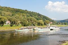 Dampfschiff-Passage (Veit Schagow) Tags: passage steamboats pillnitz dresden raddampfer dmpfschiffe begegnung knigstein elbe weiseflotte