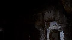 bats (shahmurai) Tags: fujifilmxt1 mithi nagarparkar thar sindh pakistan temple pillars lowlight