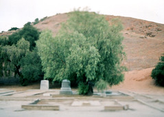 Porst SP Spadra Cemetery 4 () Tags: vintage retro classic film camera losangeles california riverside history west coast architcture porst photo quelle 35mm m42 slr germany chinon cosina japan tiltshift color abandoned cemetery