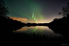 Parkland County, Alberta (WherezJeff) Tags: alberta canada chickakoo parkland aurora auroraborealis green lake northernlights pickets pillars reflection onoway ca