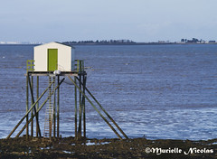 IMG_3818 Fisherman's hut ( Murielle ) Tags: sea mer seascape france charentesmaritimes fishermenshuts ilemadame mygearandme cabannesdepecheurs