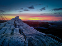 Phoney Pic (Alan Drake) Tags: light sunset sky canada colour beach clouds landscape log phone britishcolumbia samsung richmond