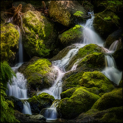 The Little Stream (PrevailingConditions) Tags: california ca waterfall 2012 cataractfalls