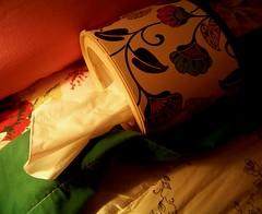 52 Weeks of Bedding Changes (6) (Renee Rendler-Kaplan) Tags: 6 home kleenex cozy bed bedroom soft gbrearview quilt kodak tissue blanket series february kodakeasyshare sick comforter gapersblock wbez week6 chicagoist colds warminside coldoutside coughs ourbed 2013 pinkpillowcases reneerendlerkaplan 52weeksofbeddingchanges floralbrushedflannelbottomsheet greentopsheet