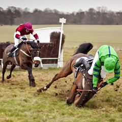 out of the frame (Jez Blake) Tags: horse fall race south helmet lincolnshire jockey racecourse hunt hurdle wold pointtopoint brocklesby