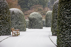 London - Snow Covered Gardens (Nomadic Vision Photography) Tags: winter england kewgardens snow cold unitedkingdom snowstorm victorian richmond minimalistic timeless royalbotanicalgardens londonicon jonreid thepalmhouse londonattraction londonnature tinareid nomadicvisiontravelphotography