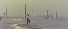 dutch winter (84) (bertknot) Tags: winter dutchwinter dewinter winterinholland winterinthenetherlands hollandsewinter winterinnederlanddutchwinter