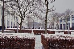 Munich en janvier 2013 (paspog) Tags: schnee snow germany munich mnchen deutschland fair messe allemagne foire neigne messemnchen