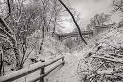 A Walk Above (CJ Schmit) Tags: bridge trees winter snow cold monochrome wisconsin canon fence path branches milwaukee copper toned lakedrive canonef1740mmf40lusm 5dmarkii canon5dmarkii cjschmit wwwcjschmitcom niksilverefex2 cjschmitphotography