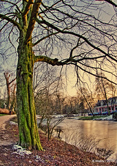 Winter in Noorderplantsoen,Groningen stad,the Netherlands,Europe (Aheroy(2Busy)) Tags: street city trees winter snow holland art water netherlands dutch architecture clouds landscape fun town europe colours different sneeuw nederland surreal fisheye hallucination groningen stad streetshot noorderplantsoen tonemapped aheroy aheroyal beautifulgroningen canonef815mmf4lfisheye