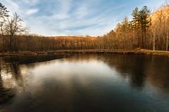Golden Pond - Frozen [EXPLORED]