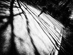 20130211_setagaya_07 (pqw93ct) Tags: bw white black monochrome japan tokyo   setagaya  sibuya   p300