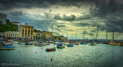 A Devon Harbour (Ellis Pictures) Tags: