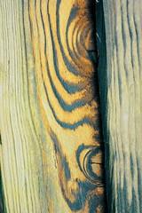 Fencing panel (sabrina254) Tags: me2youphotographylevel1