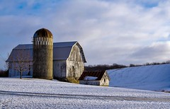 Rural Winter (Doug Wallick) Tags: winter snow minnesota barn rural silo hills weathered lightroom loretto a55 mygearandme mygearandmepremium mygearandmebronze mygearandmesilver