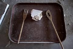 asbestos for dinner (Mycophagia) Tags: asbestos