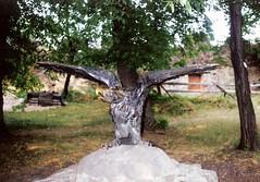 003_Ungvr_1992 (emzepe) Tags: statue bronze eagle ukraine 1992 sas szobor kirnduls ukraina bronz turul  nyr oblast  ukrayina jlius ukrajna turulszobor ungvr krptalja bronzszobor  regiunea uhorod vrkert zakarpatska zakarpattia   subcarpatia ungwar  szervezett krptaljai