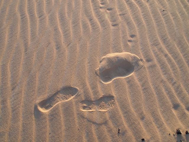 <p>小さな点々は砂漠のキツネフェネックの足跡。</p>