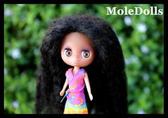 New Custom Blythe LPS N.59 by MoleDolls