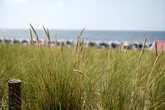 Katwijk Dutch Coast (zivko.trikic) Tags: beach coast destination dunes dutch holland homes horizon houses huts katwijk netherlands overnight recreation row sea summer sunny sunshine vacation white wooden