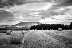 They are coming. Aliens in disguise. (.martinjakab) Tags: blackandwhite monochrome straw bales landscape schwarzweiss x100t fujifilm field clouds mountain carinthia krnten austria sky hay ngc strohballen feld wolken sterreich