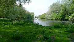 Royal Parks and Palaces with Emma Matthews (12 May 2016) (Context Travel) Tags: london england stjamesspark royal royalty parks palaces explore deeptravel iconic travel historic outdoor garden lake fountain wildlife nature