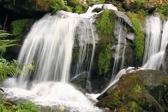 Triberg (laura.foto) Tags: triberg waterfall waterflowing water nature germany schwarzwald blackforest