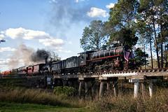 Teamwork (SJB Rail) Tags: ac16 221a pb15 448 qr queensland railways rail steam trains australia baldwin s118 usatc