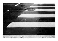 160130_PEN_EE-2_ilford-delta100_00028_ (A Is To B As B Is To C) Tags: aistobasbistoc antwerp antwerpen belgium belgi zebra crossing whitestripes asfalt olympus penee2 analog ilford delta 100asa bw