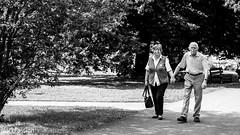 Liebe vergeht Nicht (BlackPassionPhotography) Tags: blackpassion blackpassionphotography streetphotographer streetphotography streetfotografie blackandwhite bnw instablackandwhite monochrome monoart instabw bnwsociety bwlover bwphotooftheday photooftheday bw instagood bwsociety bwcrew bwwednesday instapickbw bwstylesgf iroxbw igersbnw bwstyleoftheday monotone monochromaticnoir fineartphotobw