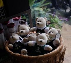 Bear Necessities (Bangkok) (jcbkk1956) Tags: bears toys softtoys starbucks bangkok thailand thonglo coffeeshop fuji xt1 manual zeiss 45mmf28 carlzeiss manualfocus