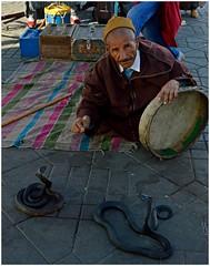(ceciliacatani1) Tags: jemaaelfna marrakech incantatore serpente berbero morocco marocco