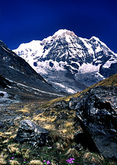 S0600003 Annapurna  Peak (tsuping.liu) Tags: mountain morningglory landscape nature natureselegantshots naturesfinest nationalgeographic trekking