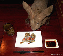 Dr. Takeshi Yamada and Seara (Coney Island Sea Rabbit) at the Sake Japanese sushi buffet restaurant in Brooklyn, NY on March 27, 2016.  20160527Fri DSCN6211=3030pC. spider roll sushi (searabbits23) Tags: searabbit seara takeshiyamada  taxidermy roguetaxidermy mart strange cryptozoology uma ufo esp curiosities oddities globalwarming climategate dragon mermaid unicorn art artist alchemy entertainer performer famous sexy playboy bikini fashion vogue goth gothic vampire steampunk barrackobama billclinton billgates sideshow freakshow star king pop god angel celebrity genius amc immortalized tv immortalizer japanese asian mardigras tophat google yahoo bing aol cnn coneyisland brooklyn newyork leonardodavinci damienhirst jeffkoons takashimurakami vangogh pablopicasso salvadordali waltdisney donaldtrump hillaryclinton endangeredspecies save